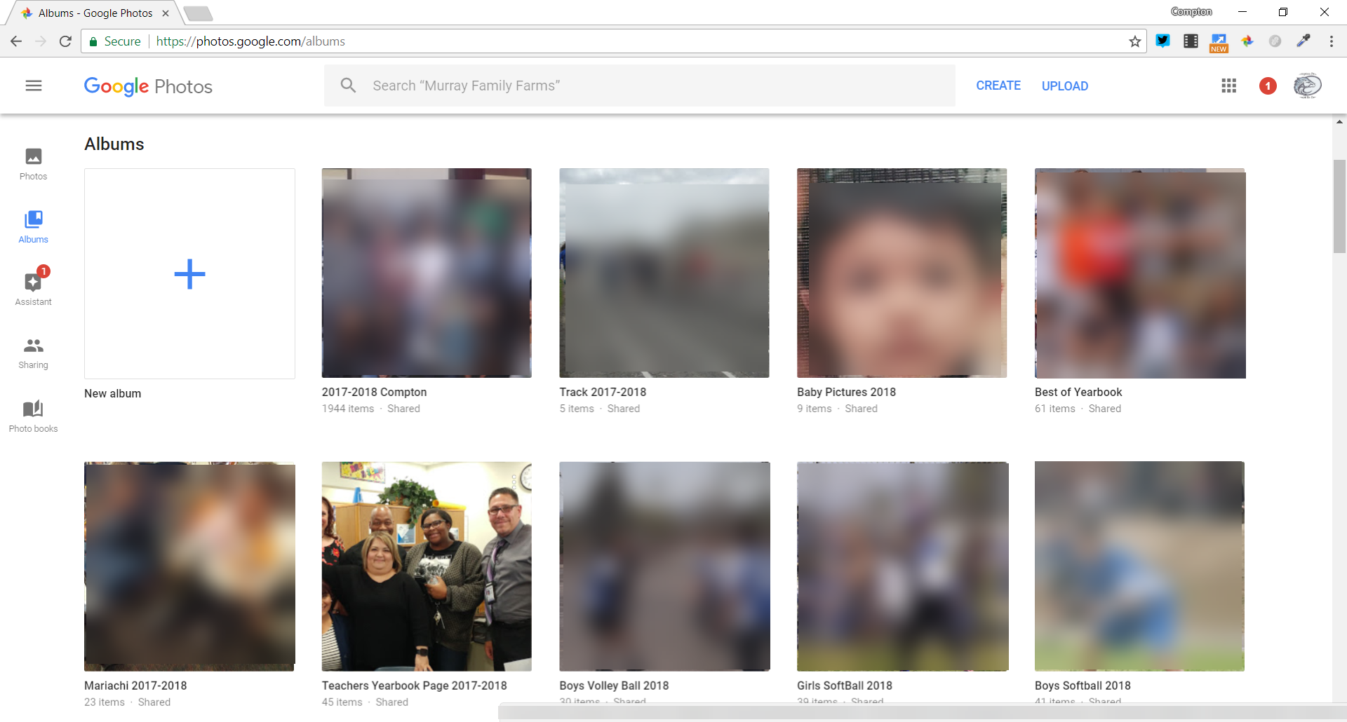 Google Photos Albums example